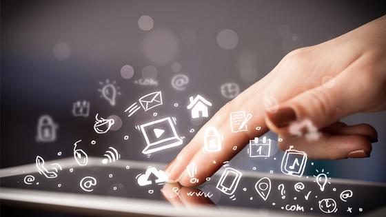 地网因特网接入服务业务(ISP)许可证